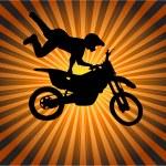 Постер, плакат: Stunt biker