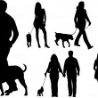Stock Vector: Walking dogs