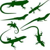 Lizards silhouettes — Stock Vector