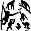 Monkey silhouettes — Stock Vector