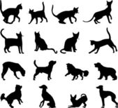 Cats and dogs silhouettes — Stock Vector