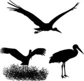 Stork silhouettes — Stock Vector