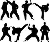 Karate fighters — Stock Vector