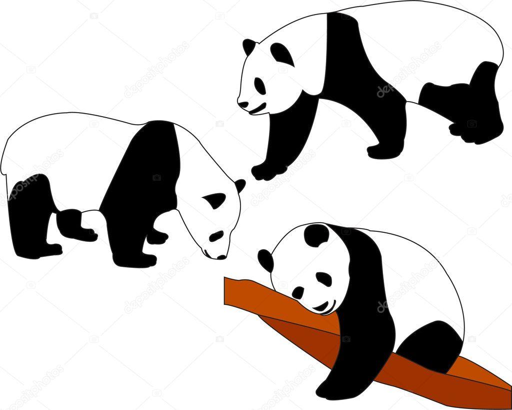 Chinese Panda Vector Panda Bears Vector Vector