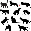 Cats silhouettes — Stock Vector #2574836