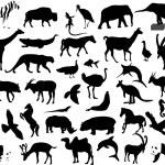 Animals — Stock Vector #2579009