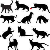 Silhouettes de chats — Vecteur