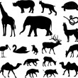 Animals silhouettes — Stock Vector #2619879