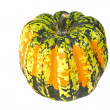 Stock Photo: Carnival Winter Squash