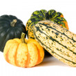 Winter Squash - Stock Photo