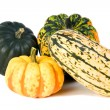 Winter Squash — Stock Photo