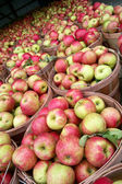 Apples at the Market — Stock Photo