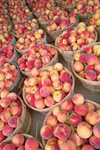 Bushels of Fresh Peaches — Stock Photo