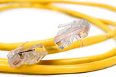 RJ-45 And Cat 5 Cable — Stock Photo