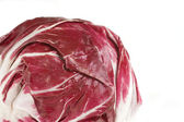 Fresh Radicchio Head — Stock Photo