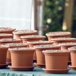 Royalty-Free Stock Photo: Clay pots
