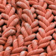 Rolled up rope - Stock Photo