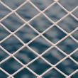 Stock Photo: Net