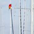 Royalty-Free Stock Photo: Man on a mast