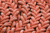 Rolled up rope — Stock Photo