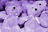 Ursos de pelúcia — Fotografia Stock