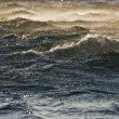 Stock Photo: Rough sea