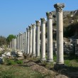Antiques columns at Ephesus, Turkey — Stock Photo