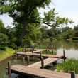 Japanese Garden — Stock Photo #2033113