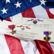 Stock Photo: Bronze star and Purple heart