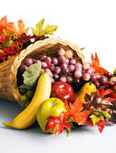 Cornucopia the horn of plenty — Stock Photo