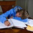 Sleeping through homework — Stock Photo