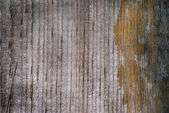 Wood grain in old board — Stock Photo