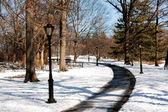 Lampe post chemin bordé — Photo