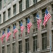 Row of American Flags — Stock Photo #2552187