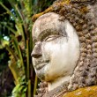 Buddha statue in laos — Stock Photo #1979553
