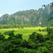 The landscape of vang vieng,laos - Stock Photo