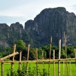 The landscape of vang vieng,laos — Stockfoto
