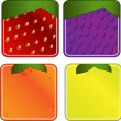 Royalty-Free Stock Vector Image: Squared Fruits Collection