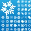 Set of 49 highly detailed snowflakes. — Stock Vector #1990955