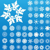 Set of 49 highly detailed snowflakes. — Stock Vector