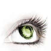 Güzellik büyük göz. — Stok fotoğraf