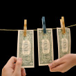 Stock Photo: Dollars on the wire