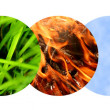 five elements — Stock Photo