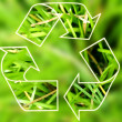 Stock Photo: Recycle symbol .