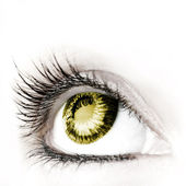 Wielkie, wielkie oko. — Zdjęcie stockowe