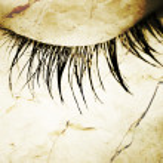 Great eye - MACRO — Stock Photo #2308350