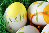 Painted easter eggs — Stock Photo
