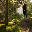 Royalty-Free Stock Photo: Bride and Groom Kissing in Forest