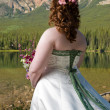 Bride in the Mountains — Stock Photo
