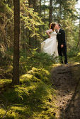 Bride and Groom Kissing in Forest — Stock Photo